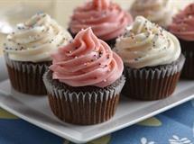 Gluten-Free Double Chocolate Cupcakes with Vanilla Frosting